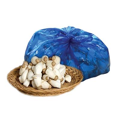 새송이버섯 솎음 이미지